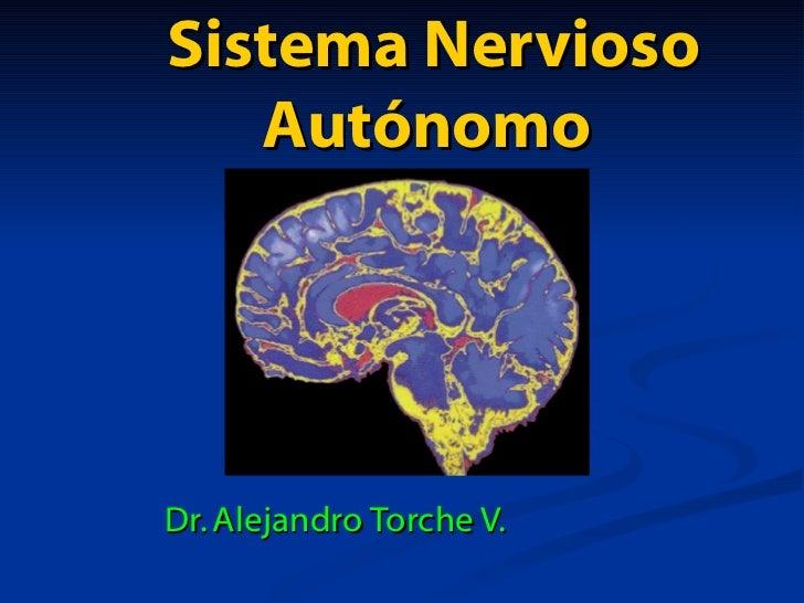 Sistema Nervioso Autónomo  Dr. Alejandro Torche V.