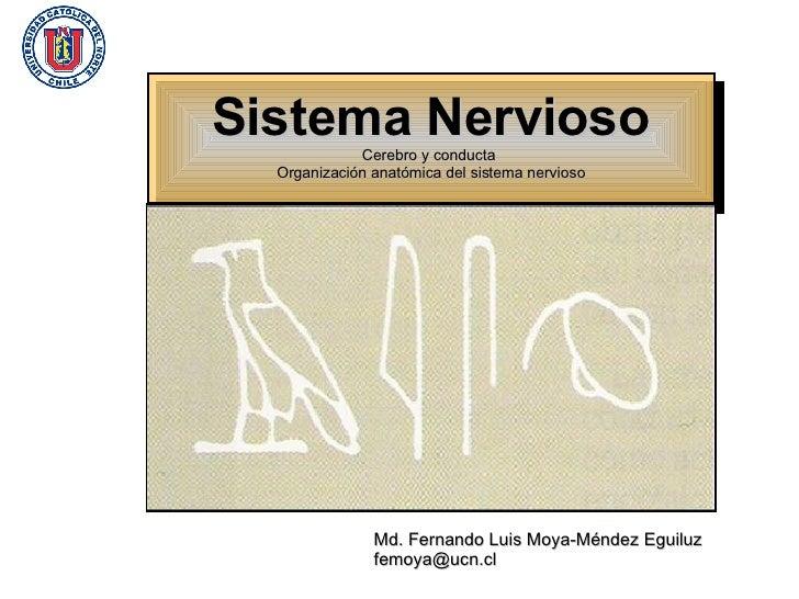 Md. Fernando Luis Moya-Méndez Eguiluz [email_address]   Sistema Nervioso Cerebro y conducta  Organización anatómica del si...