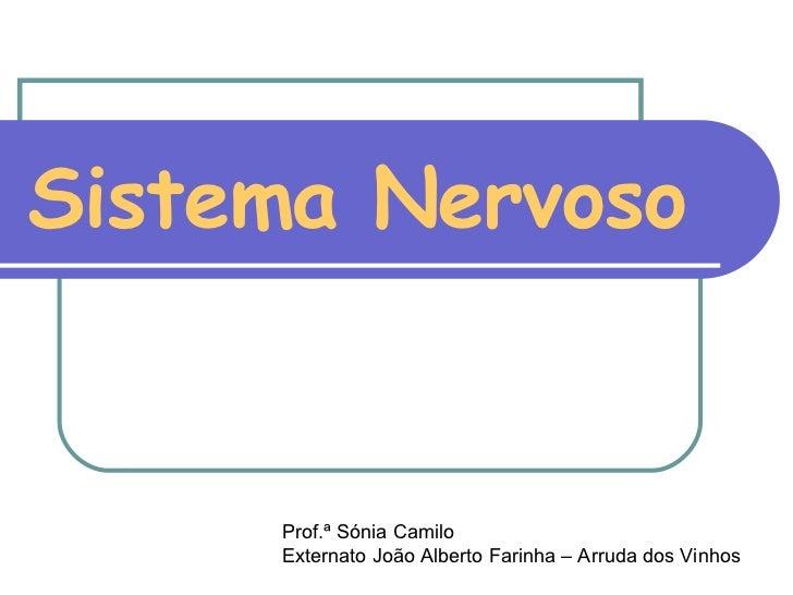 Sistema Nervoso Prof.ª Sónia Camilo Externato João Alberto Farinha – Arruda dos Vinhos