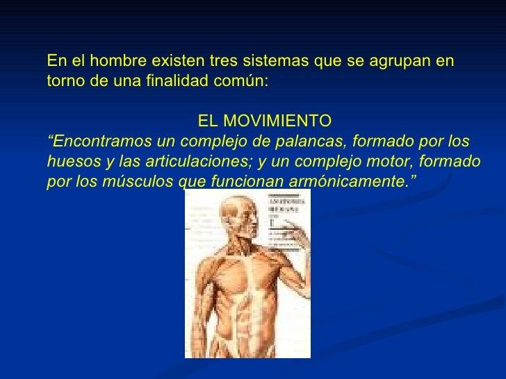 """En el hombre existen tres sistemas que se agrupan entorno de una finalidad común:                     EL MOVIMIENTO""""Encont..."""
