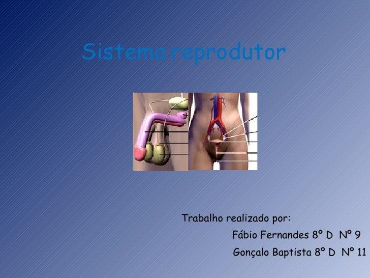 Sistema reprodutor Trabalho realizado por:  Fábio Fernandes 8º D  Nº 9 Gonçalo Baptista 8º D  Nº 11