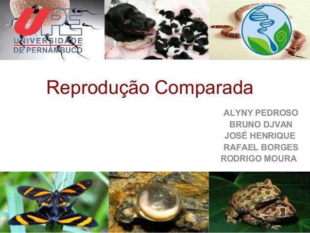 Reprodução Comparada ALYNY PEDROSO BRUNO DJVAN JOSÉ HENRIQUE RAFAEL BORGES RODRIGO MOURA