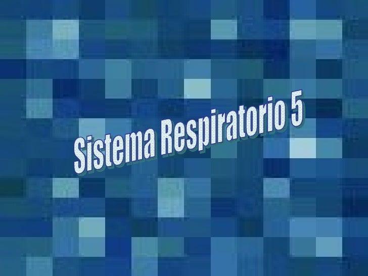 Sistema Respiratorio 5