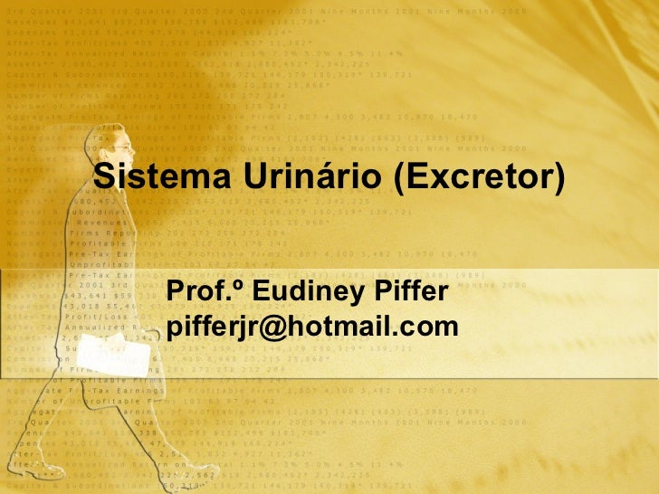 Sistema Urinário (Excretor)   Prof.º Eudiney Piffer [email_address]