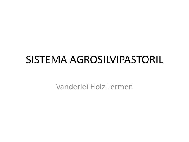 SISTEMA AGROSILVIPASTORIL Vanderlei Holz Lermen