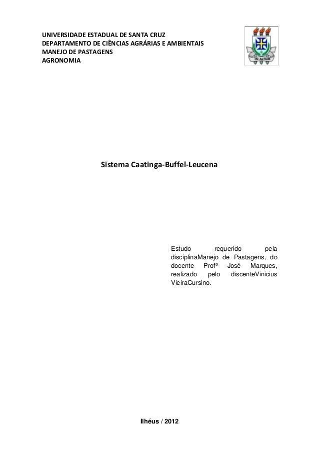 UNIVERSIDADE ESTADUAL DE SANTA CRUZ DEPARTAMENTO DE CIÊNCIAS AGRÁRIAS E AMBIENTAIS MANEJO DE PASTAGENS AGRONOMIA Sistema C...