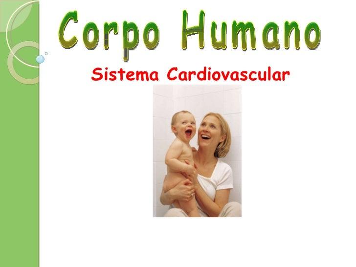 Corpo Humano Sistema Cardiovascular