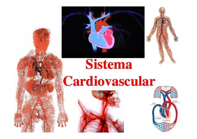 SistemaSistemaSistemaSistema CardiovascularCardiovascular
