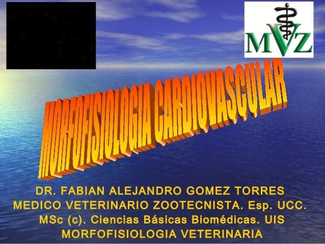 DR. FABIAN ALEJANDRO GOMEZ TORRESMEDICO VETERINARIO ZOOTECNISTA. Esp. UCC.   MSc (c). Ciencias Básicas Biomédicas. UIS    ...