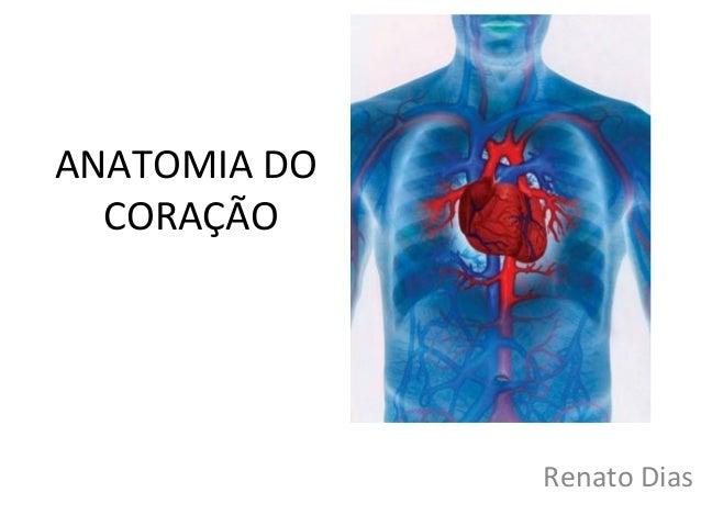 ANATOMIA DO CORAÇÃO Renato Dias