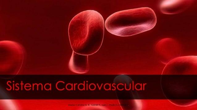 Sistema Cardiovascular Alunos: Carolina G. B., Gabriel T., Juan J., Paulo Z. e Wendy T.