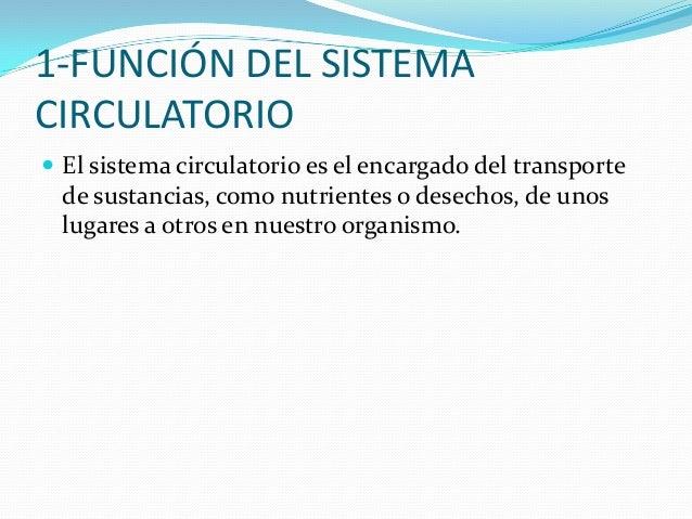 2-¿POR QUÉ ESTÁ COMPUESTO ELSISTEMA CIRCULATORIO? El sistema circulatorio está compuesto por el corazón,la sangre y los v...