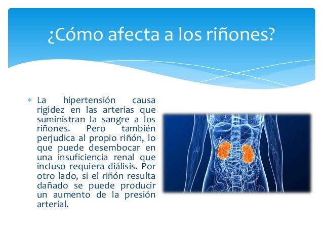 Sistema circulatorio e Hipertensión