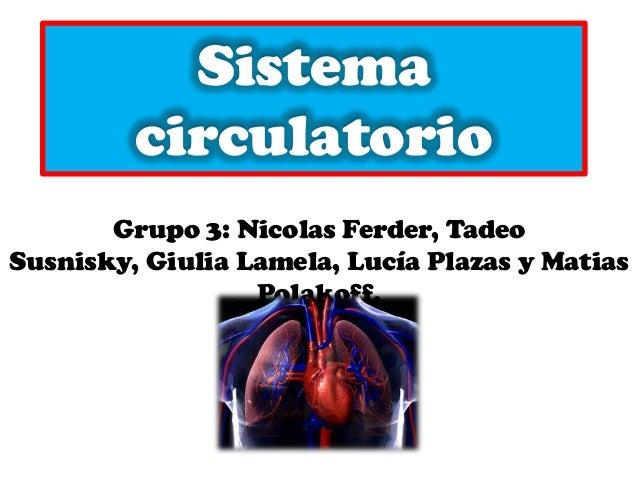 Sistema circulatorio Grupo 3: Nicolas Ferder, Tadeo Susnisky, Giulia Lamela, Lucía Plazas y Matias Polakoff.