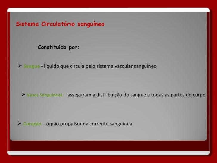 Sistema circulatorio powerpoint Slide 2