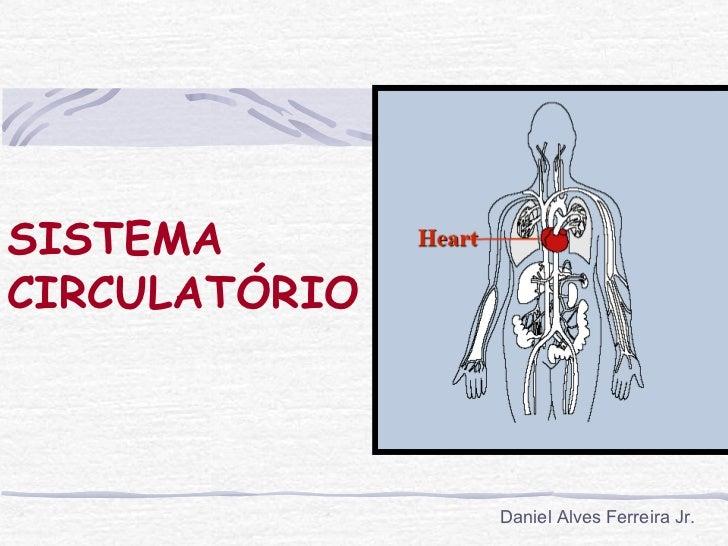 SISTEMACIRCULATÓRIO               Daniel Alves Ferreira Jr.