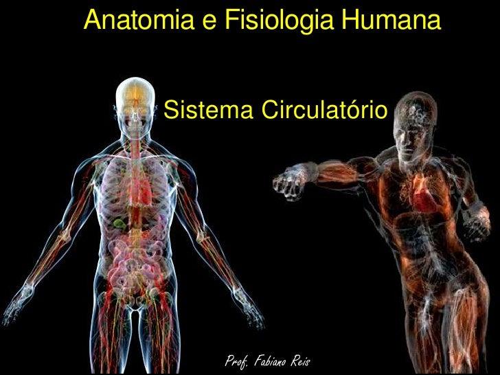 Anatomia e Fisiologia Humana<br />Sistema Circulatório<br />Prof. Fabiano Reis<br />