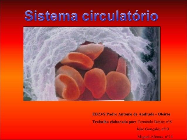 EB23/S Padre António de Andrade - OleirosTrabalho elaborado por: Fernando Bento; nº8João Gonçalo; nº10Miguel Afonso; nº14