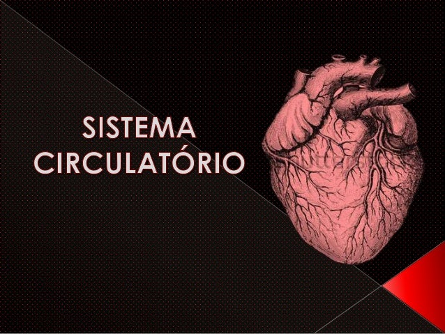   Os peixes possuem circulação simples, incompleta e fechada e seu coração tem duas cavidades( buracos )- 1 átrio e 1 ven...