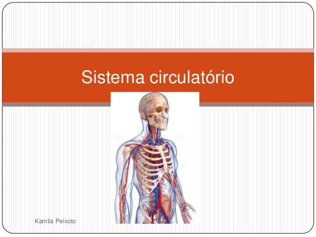 Kamila Peixoto Sistema circulatório