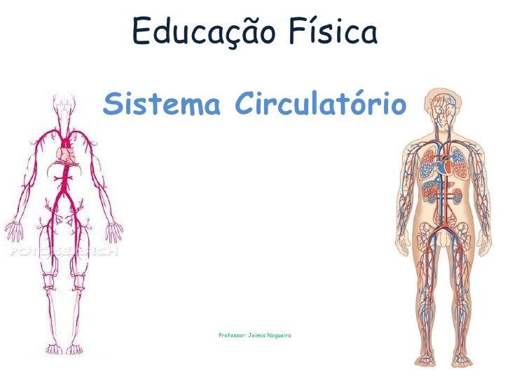 Educação Física  Sistema Circulatório            Professor: Jeimis Nogueira
