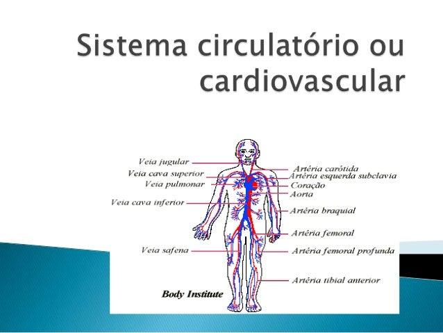   O sistema circulatório é o sistema pelo qual são transportados nutrientes (como aminoácidos, eletrólitos e linfa), gase...