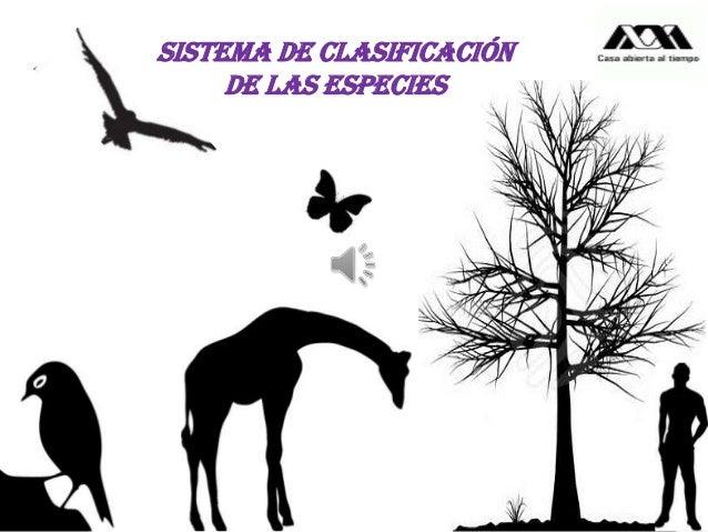 Sistema de clasificación de las especies