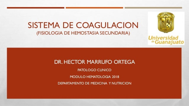 SISTEMA DE COAGULACION (FISIOLOGIA DE HEMOSTASIA SECUNDARIA) DR. HECTOR MARRUFO ORTEGA PATOLOGO CLINICO MODULO HEMATOLOGIA...