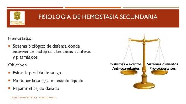 Sistema de coagulacion Slide 2