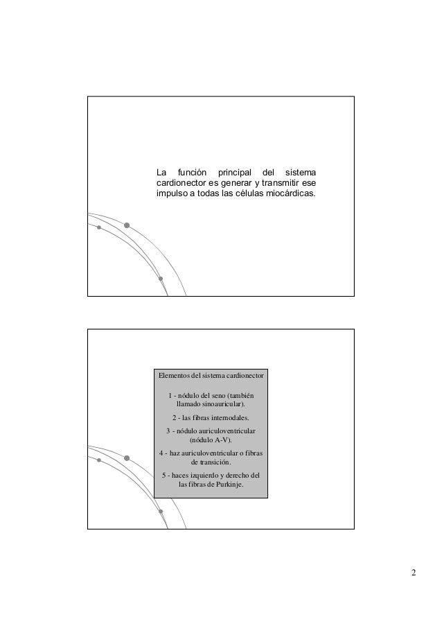 Sistema de conduccion Slide 2
