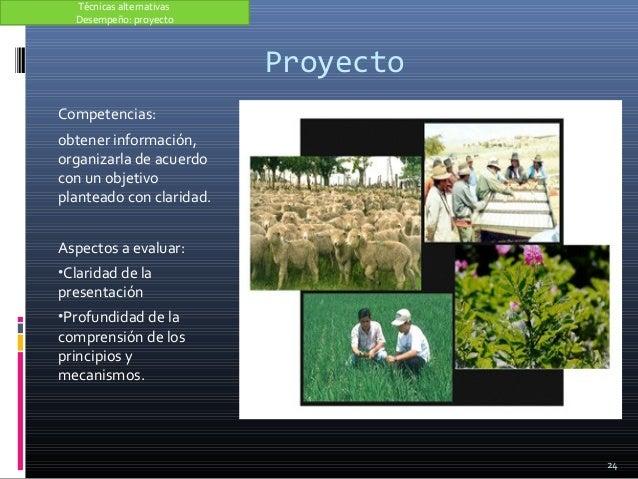 Proyecto Competencias: obtener información, organizarla de acuerdo con un objetivo planteado con claridad. Aspectos a eval...