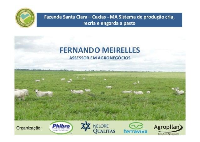 FazendaSantaClara– Caxias‐ MASistemadeproduçãocria,                                recriaeengordaapasto      ...