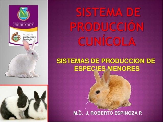 SISTEMAS DE PRODUCCION DE ESPECIES MENORES M.C. J. ROBERTO ESPINOZA P.