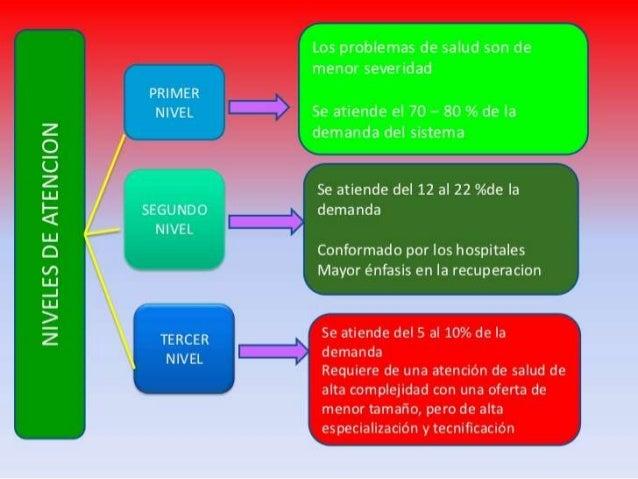 LOS ELEMENTOS CONSTITUTIVOS DE LAS REDES DE ATENCIÓN DE SALUD LA POBLACIÓN LA ESTRUCTURA OPERACIONAL DE LAS REDES DE ATENC...