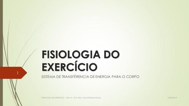 FISIOLOGIA DO EXERCÍCIO SISTEMA DE TRANSFÊRENCIA DE ENERGIA PARA O CORPO 18/05/2015FISIOLOGIA DO EXERCICIO - AULA 4 - Prof...