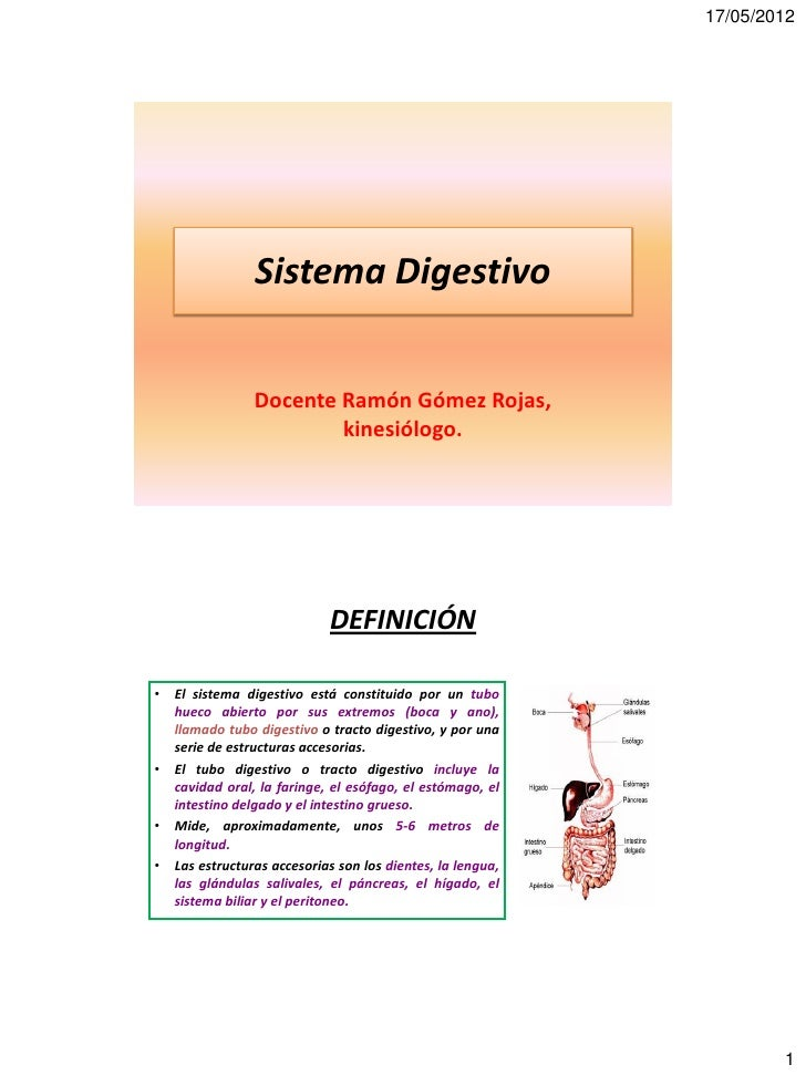 17/05/2012                 Sistema Digestivo                 Docente Ramón Gómez Rojas,                         kinesiólog...