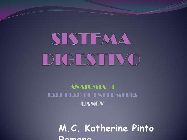 ANATOMIA - 1FACULTAD DE ENFERMERIA        UANCV  M.C. Katherine Pinto