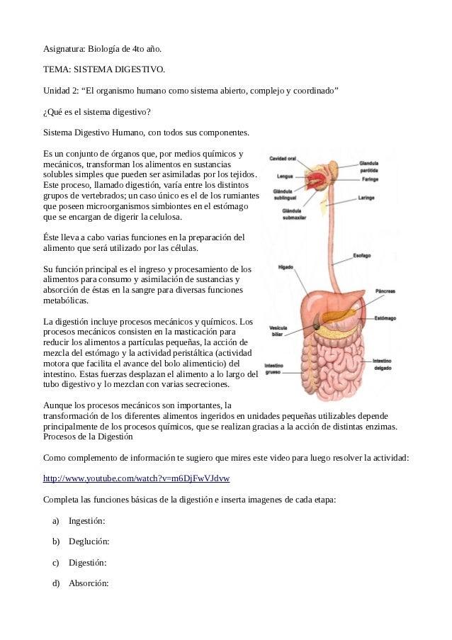 """Asignatura: Biología de 4to año.TEMA: SISTEMA DIGESTIVO.Unidad 2: """"El organismo humano como sistema abierto, complejo y co..."""