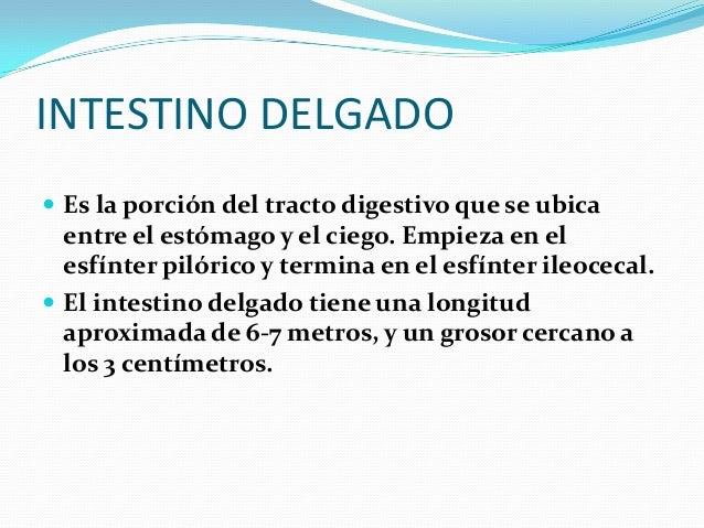 JUGO PANCREATICO  COMPOSICIÓN DEL JUGO PANCREATICO Está compuesto por agua y bicarbonato. Además posee las siguientes enz...