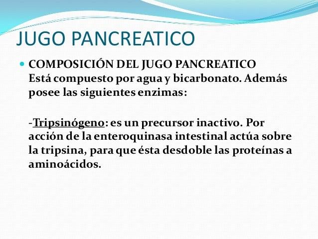 RECTO  El recto es la última porción del sistema digestivo, ubicado entre el colon sigmoide y el ano. Tiene una longitud ...