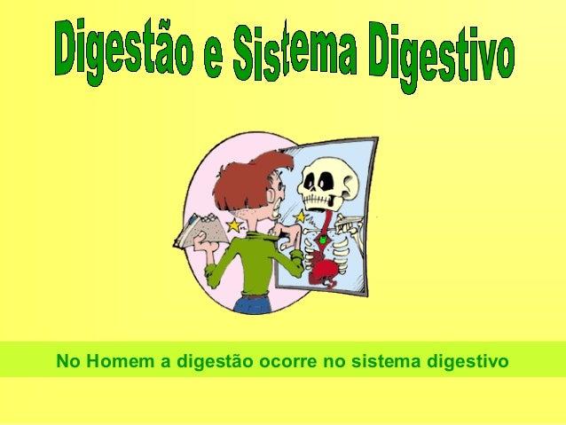 Sistema digestivo2