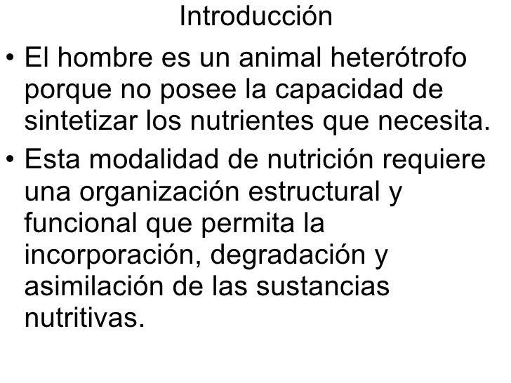 Introducción <ul><li>El hombre es un animal heterótrofo porque no posee la capacidad de sintetizar los nutrientes que nece...