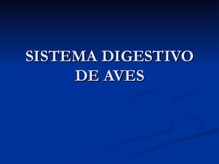 SISTEMA DIGESTIVO DE AVES