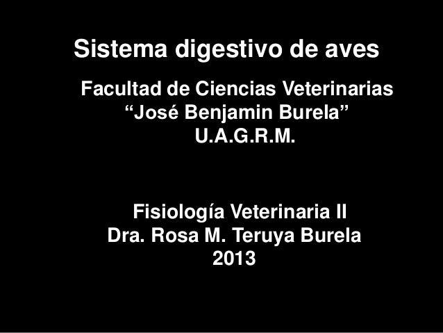 """Sistema digestivo de avesFacultad de Ciencias Veterinarias    """"José Benjamin Burela""""            U.A.G.R.M.    Fisiología V..."""