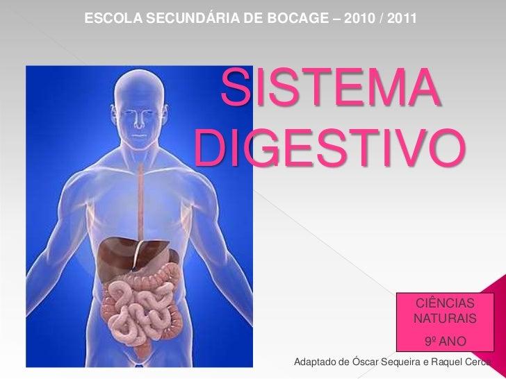ESCOLA SECUNDÁRIA DE BOCAGE – 2010 / 2011<br />SISTEMA DIGESTIVO<br />CIÊNCIAS NATURAIS<br />9º ANO<br />Adaptado de Óscar...