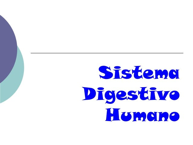 SistemaDigestivo  Humano