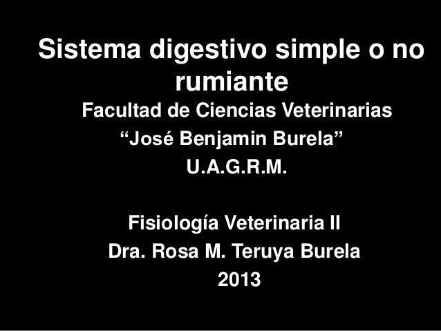 """Sistema digestivo simple o no          rumiante   Facultad de Ciencias Veterinarias      """"José Benjamin Burela""""           ..."""