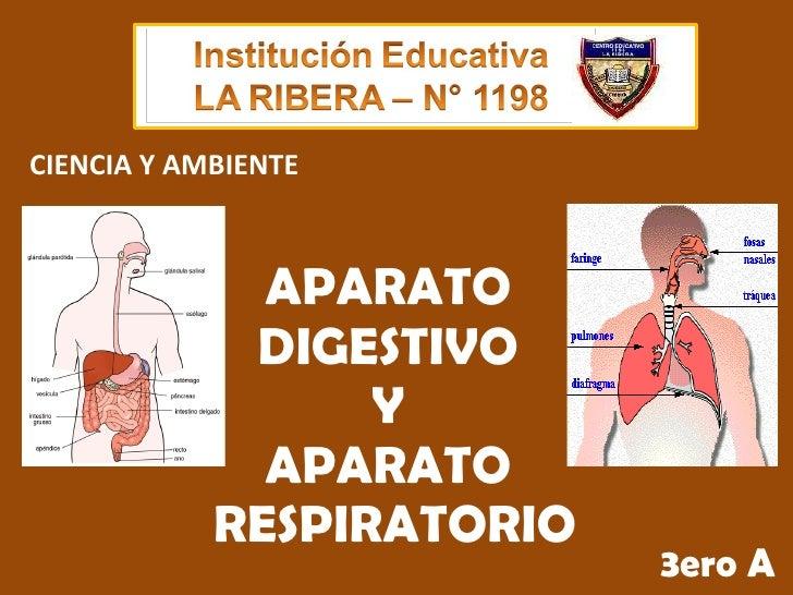 APARATO  DIGESTIVO  Y  APARATO  RESPIRATORIO 3ero A CIENCIA Y AMBIENTE
