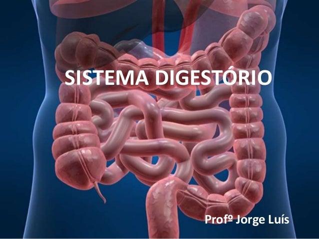 SISTEMA DIGESTÓRIO Profº Jorge Luís