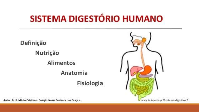 Definição Nutrição Alimentos Anatomia Fisiologia Autor: Prof. Mário Cristiano. Colégio Nossa Senhora das Graças. www.infop...